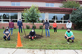 TH-edited-Efid-tree-planting
